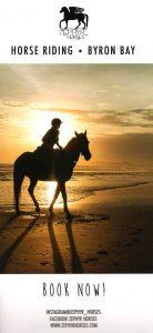 Zephyr Horses 4
